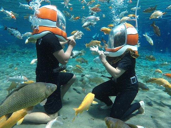 diving umbul ponggok klaten